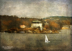 Waldemarsudde (Kerstin Frank art) Tags: trees house building water windmill boat stockholm waldemarsudde magicunicornverybest kerstinfrankart kerstinfranktexture