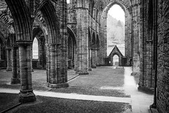 "Tintern Abbey • <a style=""font-size:0.8em;"" href=""http://www.flickr.com/photos/32236014@N07/8636142558/"" target=""_blank"">View on Flickr</a>"