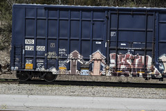 Plantrees  Destn (Revise_D) Tags: railroad art graffiti pop tagging freight revised bmb trainart plantrees planttrees fr8 krh benching fr8heaven fr8aholics