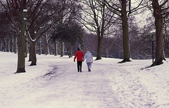 a walk in the park (Gabo Barreto) Tags: uk trees winter england snow slr love film canon walking couple yorkshire leeds slide holdinghands a1 e6 roundhaypark roundhay fd pensioners expiredfilm wintry analoguephotography