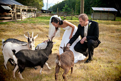 Squamish Weddings