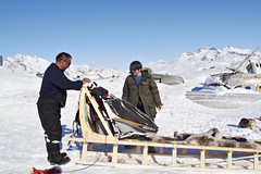 Tinit, here we come! | Greenland (jackwolfskin_com) Tags: schnee snow ice glacier greenland sledge schlitten grnland schlittenhunde sledgedogs