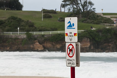 200413_0117 (amblerpix) Tags: blue beach clouds sand nikon surf day waves seagull australia stormy surfboard newsouthwales tasmansea coogee headland lifeguards desertedbeach rockoutcrop surfrescue wildweather roughwater autumnday heavyseas rockyforeshore beachinformationsigns