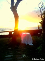 Sunrise♥ (I will be Someday♥) Tags: wedding nature sunshine sunrise photography earlymorning environment awesomescenery