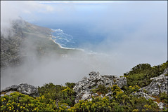 top of table mountain (Sunnyvaledave) Tags: southafrica tablemountain