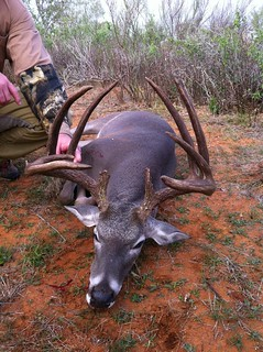 Texas Free Range Whitetail Hunt - Cotulla 33