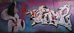 Cruella Deville (jessnphoto) Tags: uk england streetart colour art canon graffiti artwork paint colours artistic unitedkingdom sheffield wideangle spray canon550d