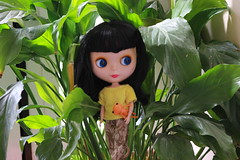 Speak softly and carry a frog! (*DollyLove*) Tags: doll blythe goldie allgoldinone wonderfrog