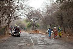 (xdun) Tags: woman india man colour tree men alberi canon women flickr mj pixel mija 2470 canoneos5d incredibleindia unrealpixel mijalab mijabuffa