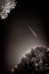Je viens vers toi/I'm coming to you/Estoy llegando a t (Elf-8 moving to ipernity) Tags: sky tree plane ir contrail infrared