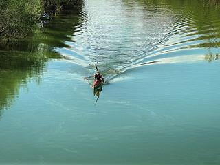 Otra primavera, y seguimos remando... / Another spring, and we paddling ...