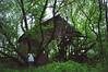 (yyellowbird) Tags: selfportrait abandoned girl barn forest illinois cari rockford