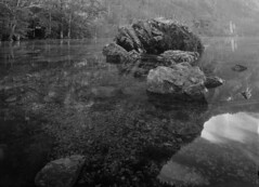 Boulder (_landes) Tags: linhoftechnikaiv largeformat landscape film analog bw schneiderkreuznach 90mm56superangulonschneider hintersee
