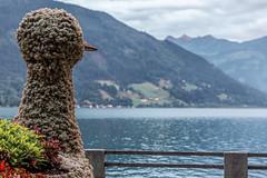 Zell am See (Tuomo Lindfors) Tags: itvalta austria sterreich zellamsee alpit alps alpen vuori mountain lakezell zellersee jrvi lake vesi water dxo filmpack topazlabs clarity