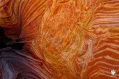 Desert Southwest USA (Desert Rat Photography (E.A. Rosen)) Tags: desertsouthwest coyotebuttes thewave antelopecanyon