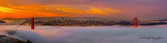 Foggy Sunrise at The Gate... (markarlilly) Tags: goldengatebridge goldengate sanfrancisco marinheadlands hawkhill panorama nikon200mm sunrise california bayarea baybridge oakland coittower fog karl