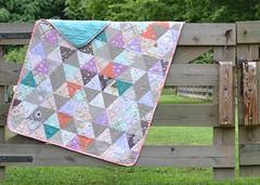 br1 (cutsewpresslove) Tags: violet craft brambleberry ridge michaelmiller quilt modern patchwork