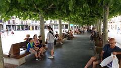 2016-8206 El Burgo de Osma - Plaza Mayor (Wolfgang Appel) Tags: wolfgappel spanien spain espana soria elburgodeosma burgodeosma plazamayor