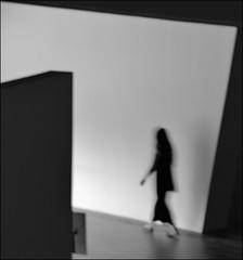 F_DSC7071-BW-Nikon D800E-Nikkor 28-300mm-May Lee  (May-margy) Tags:  bw              repofchina taiwan streetviewphotographytaiwan linesformandlightandshadows mylensandmyimagination naturalcoincidencethrumylens  fdsc7071bw portrait viewfromback   gallery taichungcity nikond800e nikkor28300mm maylee humaningeometry
