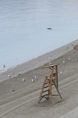 IMG_8445 (anyera2015) Tags: ceuta canon canon70d amanecer playa