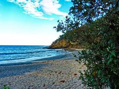 Dark Beach VI (elphweb) Tags: falsehdr fhdr seaside sea ocean water trees forest bush foliage australia outdoor