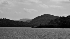 Approaching Trossachs Pier (brightondj - getting the most from a cheap compact) Tags: thirdwalk scotland trossachs lochkatrine water loch bw landscape firs pines
