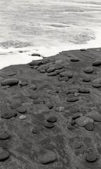 Gemstone Beach / Southland / NZ (Matthew McCutcheon) Tags: matthew mccutcheon matt 35mm epson epsonv700 v700 beach blackandwhite blackwhite blackandwhitefilm 35mmfilm sea sepia southisland southland nikon nz newzealand film filmcamera filmscan filmimage f5 nikonf5 jewelledbeach ilford400pan ilfordpan400 ilford lc29 landscape gemstonebeach