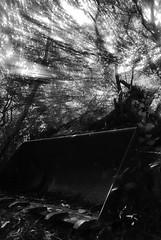 Perdido en el olvido (Sersio_Photographer) Tags: corua del conde fotografodecoruadelconde fotos con vaselina