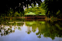 DSC_8686 (TheHouseKeeper) Tags: ninoyaquinoparksandwildlife wildlife park quezoncity philippines filipinas georgemateo mateo thehousekeeper lagoon pond huts cottages water reflections trees nature