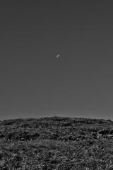 Moon over hill (InstantED) Tags: moon conichill scotland blackandwhite bw monochrome simplistic minimalism landscape night moonrise dark sky travelphotography travel nikon d3300 1855mm schottland mond landschaft schwarzweis