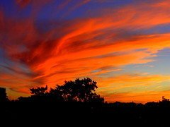 New York Sunset (dimaruss34) Tags: newyork brooklyn dmitriyfomenko image sunset sky clouds