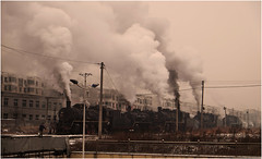 Lined Up (Welsh Gold) Tags: sy steam loocomotives morning shift preparations fuxin liaoning province china