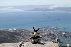 Table Mountain (Dave Reinhardt) Tags: southafrica capetown tablemountain teddybok uploaded:by=flickrmobile flickriosapp:filter=nofilter