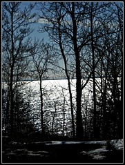 SUNLIGHT AND SHADOWS ON THE LAKE (Visual Images1) Tags: trees water sunshine minnesota shadows 6ws greatlakes lakesuperior picmonkey