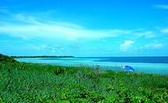 Over the Dunes (howie516) Tags: ocean sea beach clouds keys dunes floridakeys