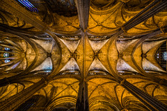 Barri Gotic Cathedral (Daniel Borg) Tags: barcelona camera old city windows light lines architecture buildings high spain pattern cathedral pov wideangle stainedglass catalonia symmetry ceiling abroad tall catalunya backlit fullframe 1224 barrigotic 6d stainedglasswindows uwa sigma1224 ultrawideangle laseu danielborg canon6d gothicquater cityandarchitecture