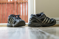 tired old trainers (Bieomax) Tags: old black running dirty trainers adidas woodfloor
