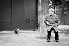 Созерцание | Meditation (yarko@streets) Tags: street bw face cat canon blackwhite oldness oldwoman 6d