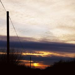 Down The Sun (  Voiceb[ ]x Photography  ) Tags: blue sunset sky orange adam bird lines silhouette clouds skyscape square landscape photography fly google bush phone purple britain norfolk voice togs vbp voicebox ukatnightuktrees voicebx adamvoice