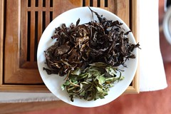 Three Oolongs (mpieracci) Tags: brown green leaves tea taiwan tasting oolong uploaded:by=flickrmobile flickriosapp:filter=nofilter