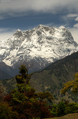 The Mighty Chaukhamba (CoSurvivor) Tags: india mountain nature landscape peak himalaya garhwal uttarakhand cosurvivor chaukhamba deoriyatal