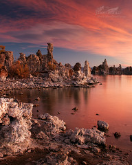 Red Dawn (Jason Branz) Tags: red lake reflection water clouds sunrise monolake tufa