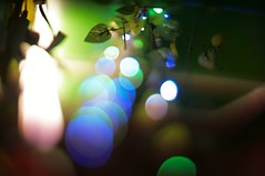 leaf (turntable00000) Tags: light japan night photography tokyo leaf shinjuku bokeh sony nightview nikkor tilt   takashi nex   citycape kitajima turntable00000