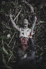 Hacked Off (zenimaging) Tags: toy actionfigure zombie walkingdead rickgrimes