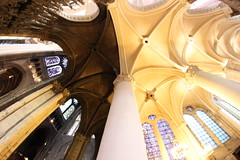 Chartres1 (tjennis) Tags: frenchgothic cathedral chartres