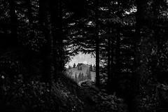 (raimundl79) Tags: wow wald white blackandwhite beautifullandscapes blackwhite bestpicture berge exploreme explore entdecken explorer flickrexploreme flickrr fotographie follow4follow foto flickrs schwarzweiss mountain