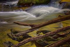 River of Dreams (kathybaca) Tags: river water streams rocks nature scene landscape waterscape beautiful wild rapids sunset wet boulders smokeymountains clear clean current gold earth planet rushing beauty creek