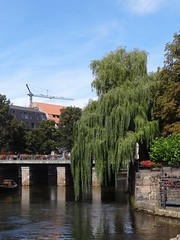 Lneburg (anders.l1) Tags: weeping willow trauerweide lneburg flus river bridge brcke boat