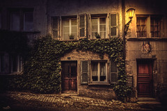 The distinctive ivy house (VandenBerge Photography) Tags: fribourg cantonfribourg switzerland schweiz europe houses street light streetlight ivy cozy ancienttown night canon city urban