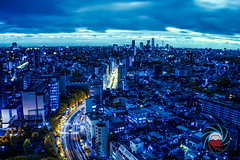 Infra Japan (Guillaume.V) Tags: japan infrared infraredsupercolor infrarouge night japaninfrared streetinfrared beautifulinfrared tokyostreet panasonicinfrared infra lumix japon beautifuljapan tokyo panasonic gf2 lumixgf2 lumixgf2intrared m43 bluenight